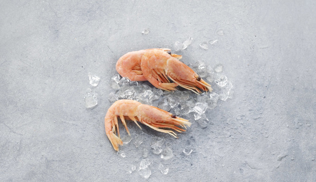 Northern prawns